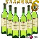 【送料無料】 国内外のコンクールで連続入賞 世界が認めた白ワイン 五月長根葡萄園 リースリングリオン 2018 白 6本セット やや辛口 720ml 6本 セット 受賞ワイン ワイン やや辛口 エーデルワイン 日本ワイン