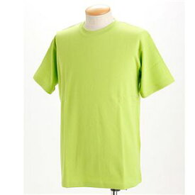 直送・代引不可ドライメッシュTシャツ 2枚セット 白+アップルグリーン LLサイズ別商品の同時注文不可