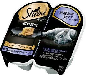 マースジャパンリミテッド SPT-14 シーバ 一皿の贅沢 しっとりテリーヌ 厳選お魚ミックス サーモン・シーフード入り 37.5g×2個 SPT14