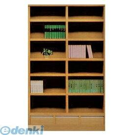 【個数:1個】大川リビング木工社(OKAWA LIVING)[4560463785426] 「直送」【代引不可・他メーカー同梱不可】 オープン書棚110 ムービー NA