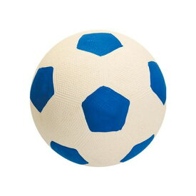スーパーキャット 4973640091492 わんわんサッカー ブルー WN2