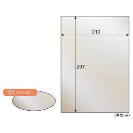 【ポイント2倍】ヒサゴ CT01S 【5個入】 カラー素材紙 クラッポメタル/パール