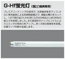 パナソニック電工[FHF63EWW-GA] G−Hf蛍光灯 FHF63EWWGA