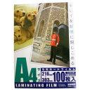 オーム電機 ラミネーターフィルム 100枚入り LAM-FA41003 [LAMFA41003]【KK9N0D18P】