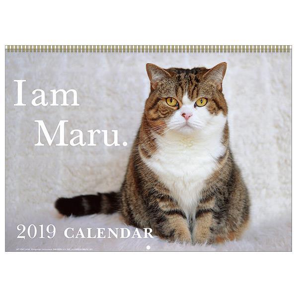 トライエックス カレンダー 2019年版 まるちゃん 2019CL-381マルチヤン [2019CL381マルチヤン]