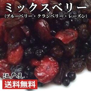 【送料無料】ミックスベリー 《 650g 》 ブルーベリー・クランベリー・レーズン 特選 ドライフルーツ ダイエット 美容と健康に嬉しいアントシアニン・鉄分・ビタミン・食物繊維が豊富