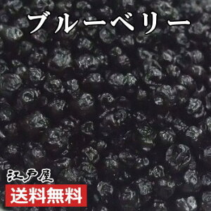 【送料無料】ドライフルーツ こだわりの厳選ブルーベリー 《 210g 》 ダイエット 美容と健康に嬉しいアントシアニン約10倍 北米産ワイルドブルーベリー100%使用 江戸屋《新鮮・高品質・自