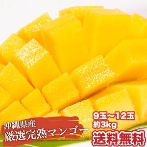 【お中元】沖縄産 完熟マンゴー♪3kg 9-12玉 送料無料【予約受付中】リピーター続出の甘さ★父の日や暑中見舞いなど、ご贈答用としてもご利用頂けます。  マンゴー  ※7月中旬〜順次発送