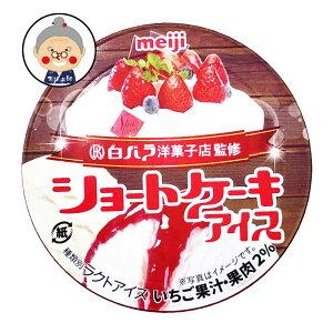 【ショートケーキアイス】 白バラ洋菓子店監修 沖縄ご当地アイス! 10個セット |アイス |