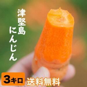津堅島 にんじん 人参 3kg 送料無料 予約販売【3月上旬〜下旬より順次発送】 |人参 |(tsuken-carrot03)(tsuken-carrot03)