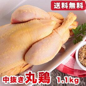 【送料無料】チキン 丸鶏 丸ごと1羽 ホールチキン(中抜き) 1.1kg 鶏の丸焼き/参鶏湯(サムゲタン)用に/ローストチキン/クリスマスパーティーに |精肉 |※配送指定も承ります(chicken-2)