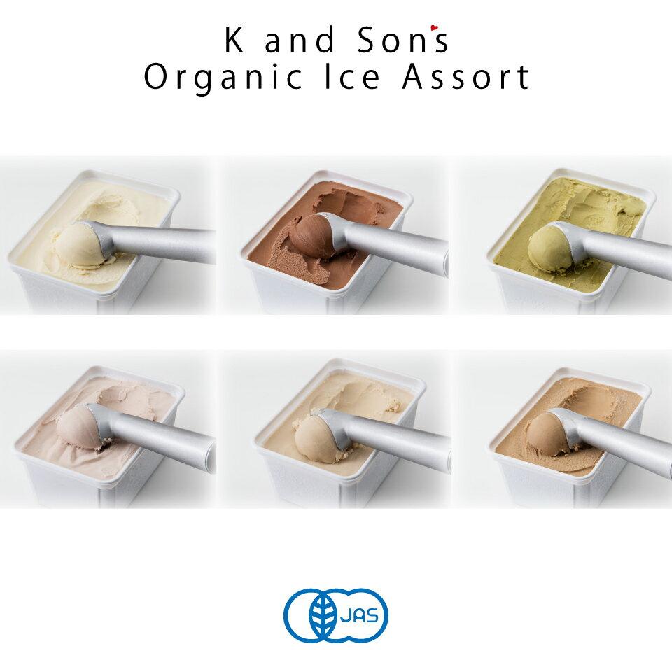 オーガニック 豆乳 アイスクリーム お徳用【2個セット】 / 1,000mL / K and Son's