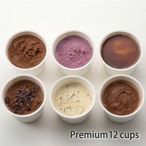 アイスクリーム ギフト オーガニック 豆乳 ジェラート プレミアム 12個入 80ml K and Son's / ギフト プレゼント 送料無料 バニラ スイーツ お菓子 低カロリー おやつ 牛乳 卵 不使用 無添加 有機