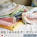ガーゼケット5重ハーフサイズ日本製綿100%コットン丸洗いOK100×140cmジュニアベビーひざ掛けオールシーズン速乾タイプギフト
