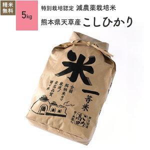 新米 熊本県天草産 コシヒカリ 米 5kg 特別栽培米 令和2年産お米 分つき米 玄米
