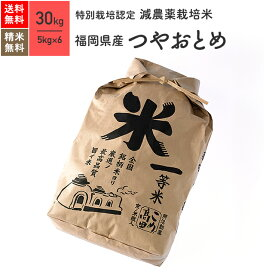 福岡県産 つやおとめ 特別栽培米 30kg(5kg×6袋)30年産米 お米 分つき米 玄米 送料無料