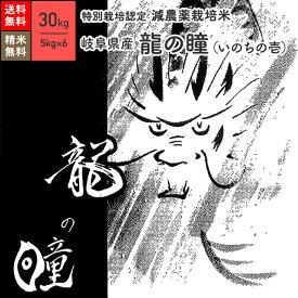 米 30kg 龍の瞳 いのちの壱 岐阜県産 特別栽培米 令和2年産 送料無料お米 分つき精米 玄米