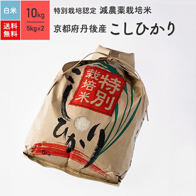 【送料無料】特別栽培米 29年産 京都府 丹後産 こしひかり 10kg (5kg×2) 白米 ※放射能検査(検出なし)