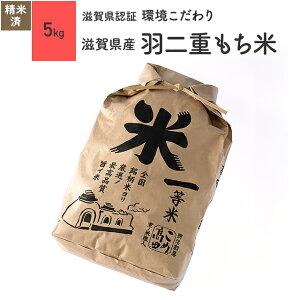 羽二重 もち米 5kg 滋賀県産 令和2年産