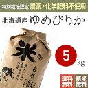 特別栽培米(無農薬・無化学肥料)北海道産ゆめぴりか 米 5kg 送料無料 28年産