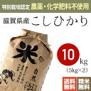【送料無料】(無農薬 玄米)特別栽培米(農薬・化学肥料不使用)28年産 滋賀県産こしひかり 10kg※放射能検査・残留農薬検査(検出なし)