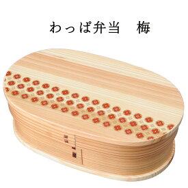 【送料無料】弁当箱 梅 仕切り付き 紙箱入り(曲げわっぱ わっぱ弁当 木製弁当箱 和風 柄付)