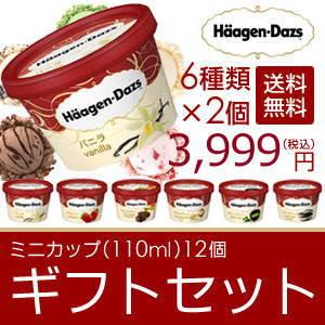 お中元 ギフト アイスクリーム ハーゲンダッツ アイスクリーム ギフト セット12個 アイス お礼 お返し 内祝い 出産祝い お祝