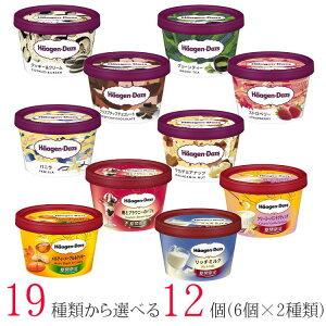 ハーゲンダッツ アイスクリーム ミニカップ 19種類から2種類選べる福袋12個(6個×2種類)セット