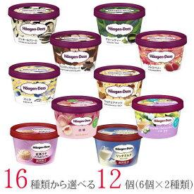 ハーゲンダッツ アイスクリーム ミニカップ 16種類から2種類選べる福袋12個(6個×2種類)セット