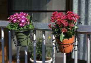 ベランダやフェンスに花が飾れる!*フラワーエンゼルPOT型No.245*引っ掛けるだけでOK!【ガーデニング花園芸鉢フラワーアレンジメント】