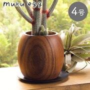 【あす楽対応】[Y'sSPACE]ムクエッグS1373穴あり受け皿付き【植木鉢自然木鉢鉢カバーオシャレおしゃれフラワーポット植物観葉植物】