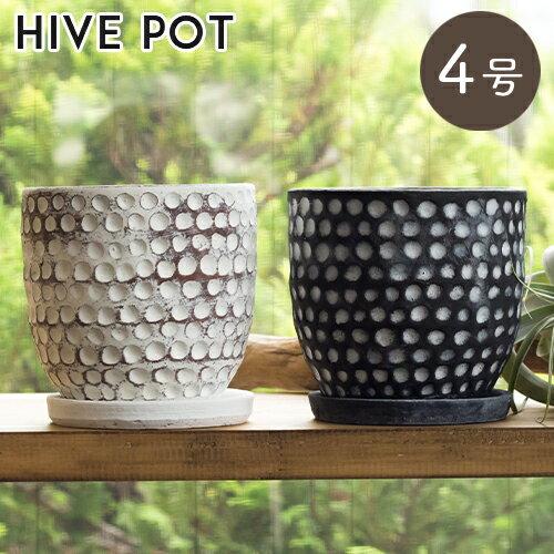 あす楽対応 植木鉢 おしゃれ 陶器 ハイブポット 2色 12cm(4号) 底穴 あり 受け皿付き 室内 陶器鉢 鉢 鉢カバー オシャレ フラワーポット 植物 観葉植物