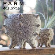 あす楽対応FARMテオドラ18(41009)植木鉢鉢カバーオシャレおしゃれフラワーポット多肉植物サボテン