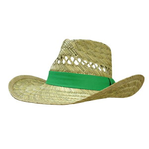 帽子 ジョンディア STRAW W/ JD PIN FIELD/OUTBACK グリーンリボン ストローハット LP42469 John Deere キャップ 農作業 おしゃれ T志 代引不可