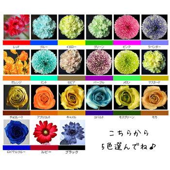 パレス化学切花着色剤ファンタジー100mlお得な選べる5本セット全21色茎生花ディスプレイデコレーションフラワーアレンジ植物染色染色液園芸ガーデニングプリザーブドドライフラワー押し花手作りDIYワークショップハーバリウム染める