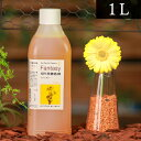 パレス化学 切花着色剤ファンタジー 1L イエロー 茎 生花 ディスプレイ デコレーション フラワーアレンジ 植物 染色 …