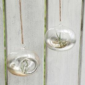 FARM ハンギングベイス オーバル ガラステラリウム ガラスケース エアープランツ 容器 エアプランツ ガラス 観葉植物 室内園芸 プラントハンガー ハンギング 吊るす インテリア