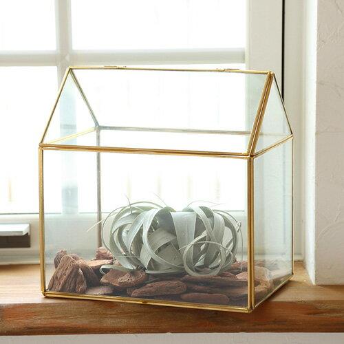 【あす楽対応】FARM テラリウム カーサ23 93079【ガーデニング インテリア エアープランツ エアプランツ ガラス 観葉植物 室内園芸】