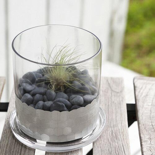 【あす楽対応】FARM シルバーシリンダー11&ソーサー 93093【鉢 観葉植物 エアープランツ エアプランツ ガラス インテリア グリーン ガーデニング 室内ガーデン】
