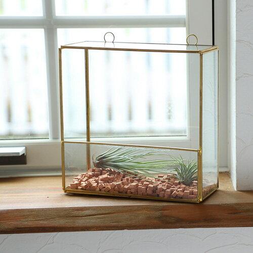 あす楽対応 FARM ウォールテラリウム 93086 ガラステラリウム ガラスケース 観葉植物 室内園芸 壁掛けタイプ