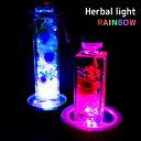 LEDハーバルライト 2色 ハーバリウム LED ライト 光る レインボー コースター herbarium