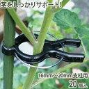 くき止めクリップ 16mm〜20mm支柱用 20個入 支柱 茎 固定 家庭菜...