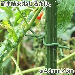 やわらかバンド φ4.8mm×3m 家庭菜園 園芸 ガーデニング 農業 農作業 枝 つる バラ 誘引 結束 支柱 野菜 簡単 かんたん 金TD
