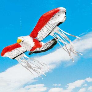 鳥 害 対策 グッズ 鳥追い 暴れん坊タカ 6個入 K-901 避け 鳥よけ 野鳥 防鳥 防獣 動物 庭 畑 農業 撃退 龍宝丸