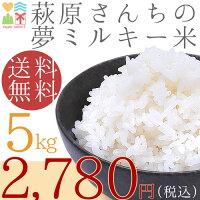 30年度!選べる白米・玄米!便利な5kg送料無料!安心の検査済み山口県産米5Kg、【送料無料】お米|新米|米|コメ