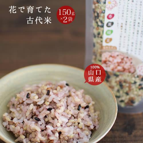 雑穀米 国産 送料無料「花で育てた古代米 2袋」発芽玄米入り お試し ポイント消化 山口県産100%
