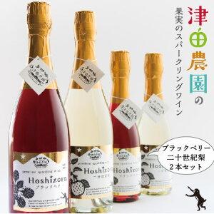スパークリングワイン ブラックベリー 二十世紀梨 2本セット ハーフボトル 津田農園 果実 お酒 お祝い 贈答 ギフト