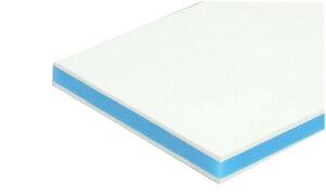 三洋化成 カラー抗菌業務用まな板 CKB-20LL 2枚セット ブルー