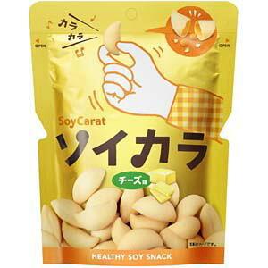 大塚製薬 ソイカラ チーズ味 27G