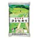 カカシ米穀 栃木県産こしひかり 10KG